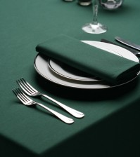 Forest Green Napkins 4 Pack